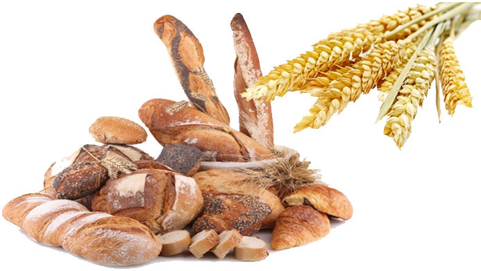 Breads and Cereals